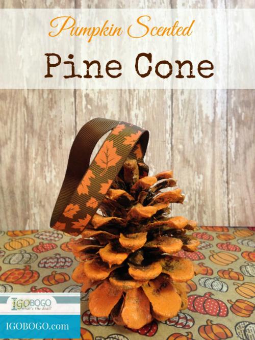 Pumpkin Scented Pine Cone