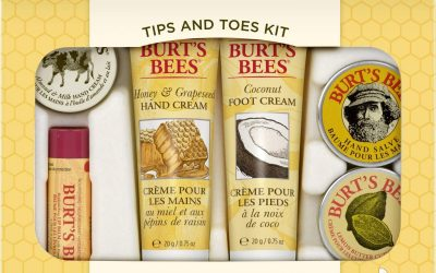 Burt's Bees Tips & Toes Kit Gift Set Only $8.91